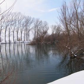 Rivers Ruda and Cetina by Milan Gilić - Landscapes Waterscapes ( river ruda cetina )
