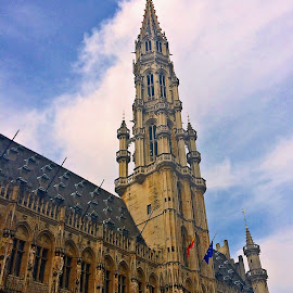 Grande Place Bruxelles by Dobrin Anca - Buildings & Architecture Other Exteriors ( building, bruxelles, big, place, central )