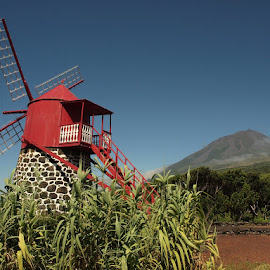 wind mill by Francisco Cardoso - Buildings & Architecture Public & Historical ( mill )