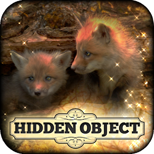 Hidden Object: Little Lovebugs