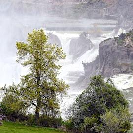 Twin Falls, Idaho by Rob Bradshaw - Landscapes Waterscapes ( powerfull falls, waterfalls, twin falls, waterfall, idaho, mist, waterfall mist )