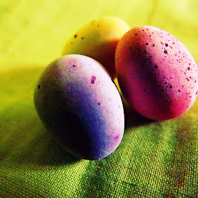 Eggs by Charlotte Swann - Artistic Objects Other Objects ( easter, eggs, purple, pink, yellow, mini )