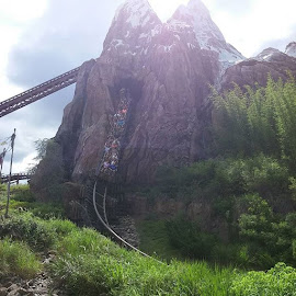 Expedition Everest by Stephen Heinly - Instagram & Mobile Android
