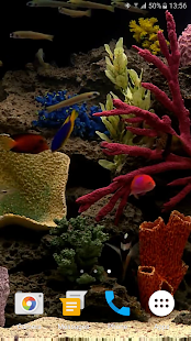 Aquarium Video Live Wallpaper - screenshot