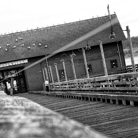 Coupeville  by Todd Reynolds - Black & White Buildings & Architecture