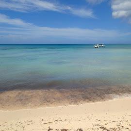 Dominican Republic by Emma Thompson - Landscapes Beaches ( ocean, dominica, beach, paradise, boat, caribbean )