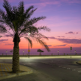Saudi Arabia 3 by Xianwen Xu - City,  Street & Park  Vistas ( saudi arabia, 2016, beach, leica, morning )