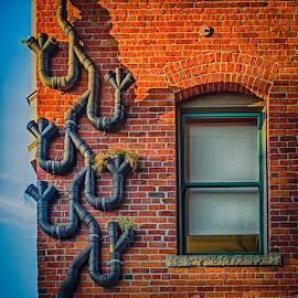 Unique Drain Pipe by Brad Larsen - City,  Street & Park  Neighborhoods ( building, brick wall, window, drain pipe, city )