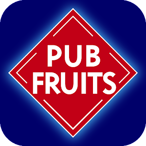 Reflex Gaming Fruit Machines