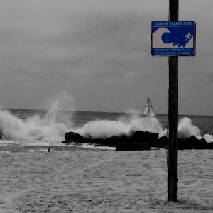 tsunami sign.jpg