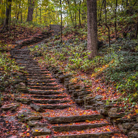 Rise and Fall by Brad Bellisle - Nature Up Close Rock & Stone ( stairs, color, fall, grant park, seven bridges )