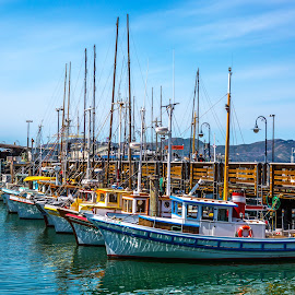 Fishermans Warf San Fran.  by Pat Brandon - Transportation Boats