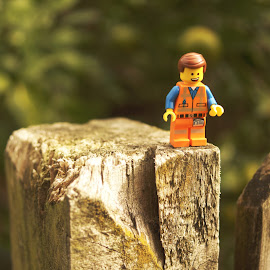 Jump by Ian MacDonald - Artistic Objects Furniture ( macro, outside, lego,  )