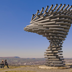 Singing Ringing Tree by Christian Rawlinson - Buildings & Architecture Statues & Monuments ( burnley, uk, mike tonkin, lancashire, pendle hill, panopticon, tonkin liu, anna liu, christian rawlinson, singing ringing tree, rastamouse, united kingdom )