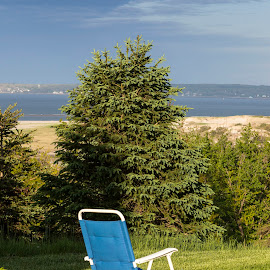 Obstructed View by David Stone - Artistic Objects Furniture ( canvas chair, chair, trees, crane beach, landscape, crane estate )