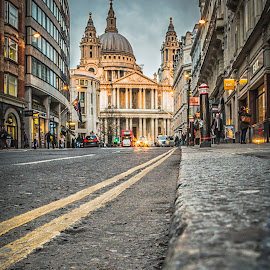 St Paul's Cathedral by Nigel Smith - Buildings & Architecture Places of Worship ( canon, building, st pauls cathedral, 70d, architecture, 10mm, city, canon eos 70d, st pauls, england, eos, london, sigma, perspective, cathedral, low )