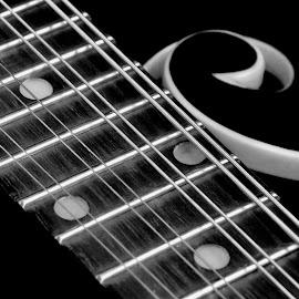 Mandolin 4 by Lisa Chilton - Abstract Macro