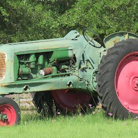 Antique Oliver Tractor by Rita Goebert - Transportation Other ( lake  weir; florida; antique tractor; oliver tractor; farm equipment; )