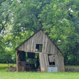 Old barn in Melissa  Tx by Aaron Buck - Buildings & Architecture Decaying & Abandoned