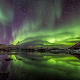 Aurora reflections by Benny Høynes - Landscapes Starscapes ( aurora borealis, northern lights, sea, reflections, norway )