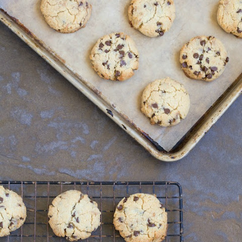 Chocolate Chip Cookies (Grain Free, Gluten Free, Paleo, Primal)