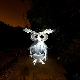 Hoot Hoot by Augustin Cross - Abstract Light Painting ( light painting, creative, lightpainting, owl, night )