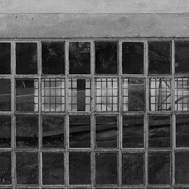 Through the Window by Andrejka Cunjac - Buildings & Architecture Architectural Detail ( window, black and white, old town, architectural detail, geometric )