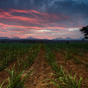 sunset at Dampe by Darryl Espiritu - Landscapes Mountains & Hills