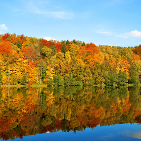 Poland in October by Dorota Grolewska - Landscapes Forests ( forest autum trees colors water see )