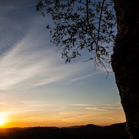Sunset by Santiago Reis Sgarbi - Landscapes Sunsets & Sunrises ( sunset, santiago reis, vinhedo, são paulo, landscapes, brasil )