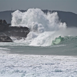 Whale beach bomb by Frank Thompson - Sports & Fitness Surfing (  )