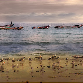 by Stephen Hooton - Landscapes Beaches ( gambia,  )