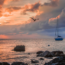 Monkey Harbour by George Petropoulos - Landscapes Sunsets & Sunrises ( sunset, beach, relaxing, boat, pelican )