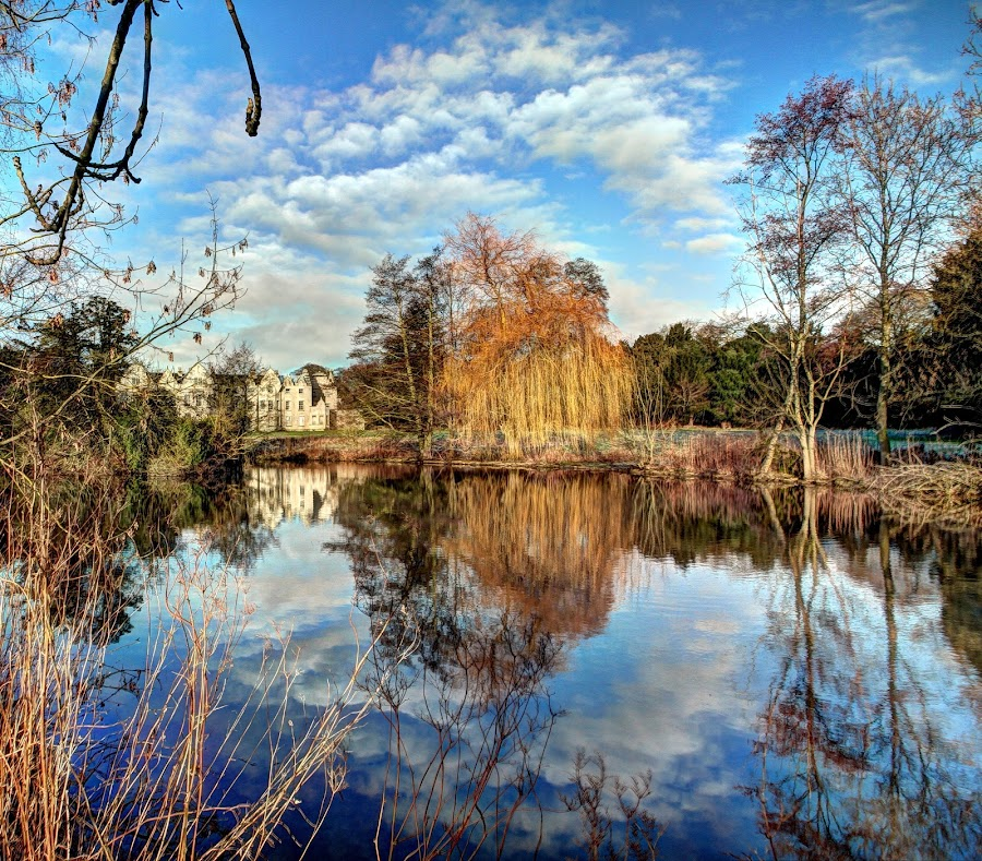 Firbeck Hall by Alec Bonser - Landscapes Waterscapes ( reflection.landscapes.hall.countryside,  )