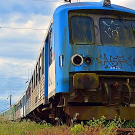 Decommissioned Train by Marco Bertamé - Transportation Trains ( blue, decommissioned, train,  )