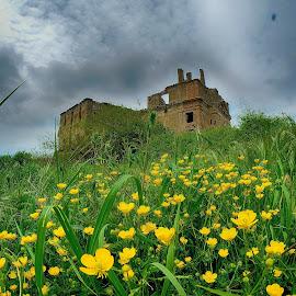 ruins by Stefano Moschella - Landscapes Prairies, Meadows & Fields ( monterano, ghost town, borghi, ruins, lazio antichita )