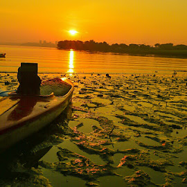 Sunrise @ Kranji , Singapore.  by Lim Wee - Landscapes Beaches