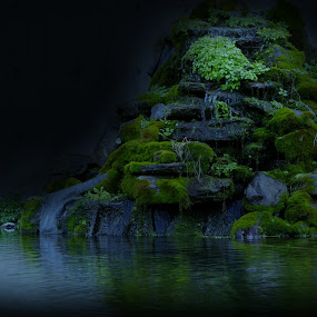 Dark Water fall by Jennifer Holmes - Landscapes Waterscapes ( waterfall, moss, darkness, pond, rocks )