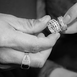 Rings by Mohamed Mashaheet - Wedding Bride ( ring, wedding photography, wedding, rings, close up )