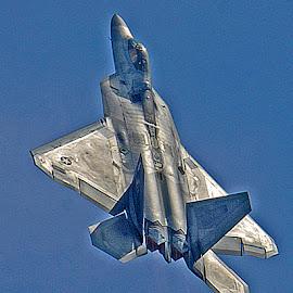 Raptor by Bill Telkamp - Transportation Airplanes ( airplanes, airplane, f22, airshow )