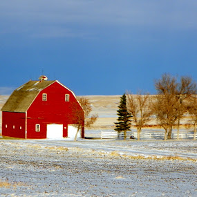 Montana Red Barn by Pam Jones - Buildings & Architecture Other Exteriors ( pwcwinter )