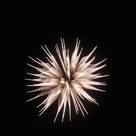 Fireworks by Loren Bradley - Public Holidays July 4th ( atchison, amelia, fireworks, july, earhart )