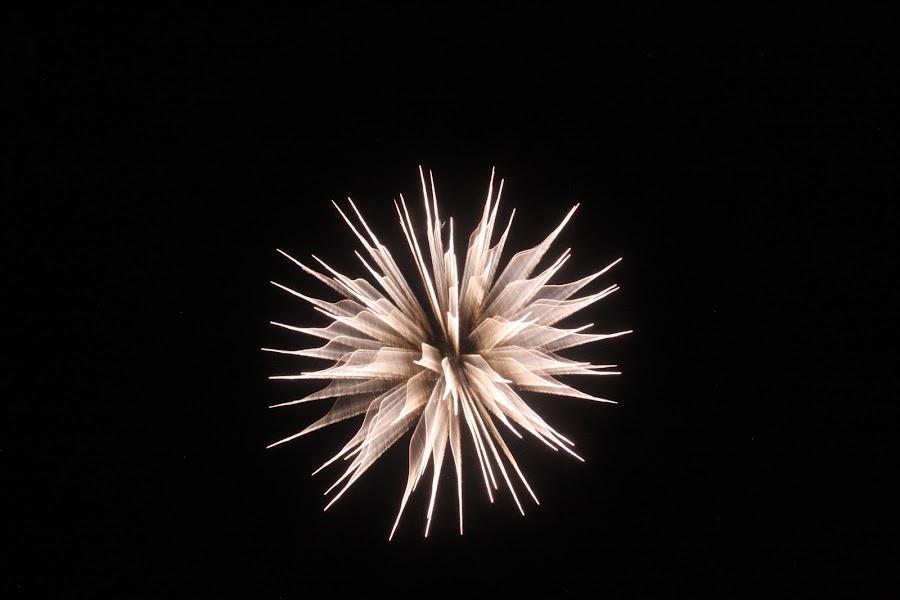 Fireworks by Loren Bradley - Public Holidays July 4th ( atchison, amelia, fireworks, july, earhart,  )