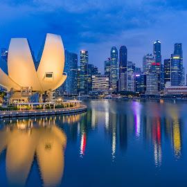 Singapore blue hour by Andreas Rassele - City,  Street & Park  Skylines ( skyline, cityscape, singapore )