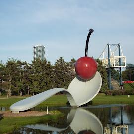 Reflections Spoon Bridge & Cherry  by Rachel Popowski - Buildings & Architecture Statues & Monuments