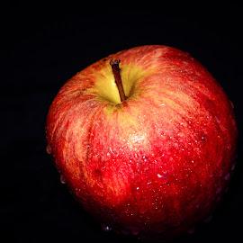 Apple by Shiva Ranjita - Food & Drink Fruits & Vegetables ( sweet, single, red, apple, fruits )