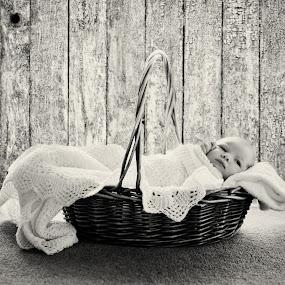 Cute by Karissa Best - Babies & Children Babies