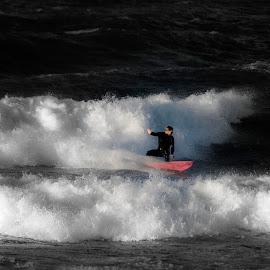 Surfing by Staffan Håkansson - Sports & Fitness Surfing ( water, red, surfing, waves, rapsbollen )