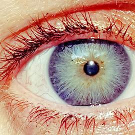 Brown to blue by Hayley Moortele - People Body Parts ( #eyes, #owneye, #blueandgreens, #bodyparts, #lashes, #selfie, #closeup )