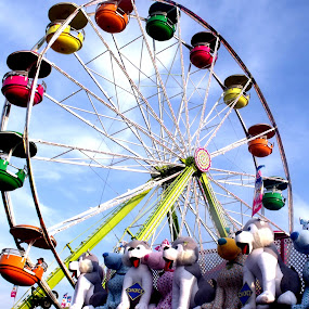 by Ginger Fisher - City,  Street & Park  Amusement Parks